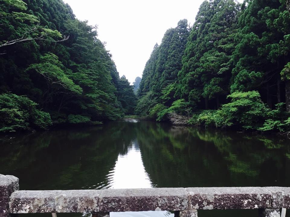 恩師箱根公園4
