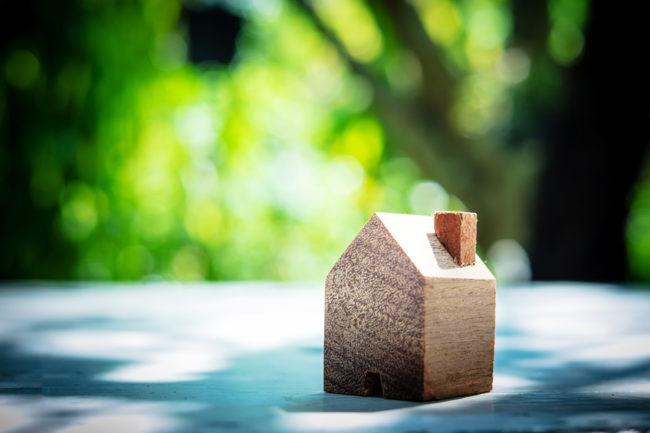 wooden model house